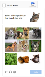 NoCaptch reCaptcha - now with cats!